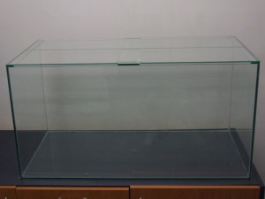 AJ Creative Glass - Fishtank (2)